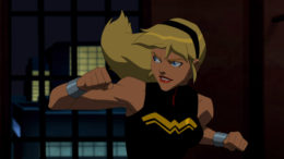 Wonder Girl Primer – Young Justice